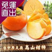 水果達人 台中摩天嶺高山甜柿 6A6兩-1箱(10顆/箱)【免運直出】