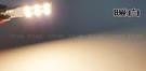 T10側發光9顆億光2835 (FOCUS MK4 後行李箱) 超亮大牌燈