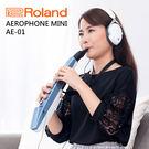 Roland 樂蘭 Aerophone mini 數位吹管 AE-01 AE01 超輕量 可插耳機