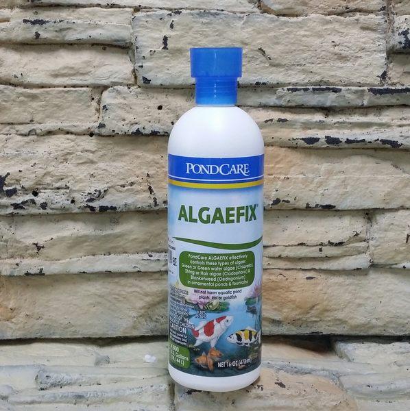 【西高地水族坊】美國魚博士API 池塘除藻劑PONDCARE ALGAEFIX 473ml