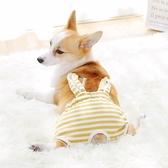 XL-2XL 母狗狗生理褲女姨媽衛生巾寵物安全防交配【匯美優品】