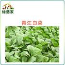 【綠藝家】A03.青江白菜種子10000...