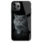 🍏 iPhone11ProMax 蘋果手機殼 可掛繩 藍貓 鋼化玻璃 硬殼軟邊 iX/i8/i7/i6s