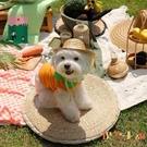 可愛背心寵物衣服夏季狗狗貓咪薄款小型犬幼犬【倪醬小鋪】