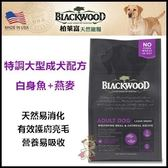 【行銷活動73折】*KING WANG*《柏萊富》blackwood 大型成犬配方 白鮭魚+燕麥 30磅