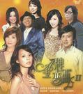金牌戀曲2 雙DVD (音樂影片購)...