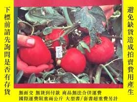 二手書博民逛書店Current罕見Perspectives in Biology