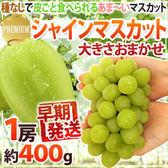 【果之蔬-全省免運】日本長野縣溫室麝香葡萄X1串【每串約350~400g±10%】