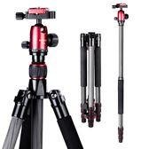 相機腳架 manbily/曼比利CZ-303碳纖維三腳架單反相機便攜佳能三角架小支架 JD【美物居家館】
