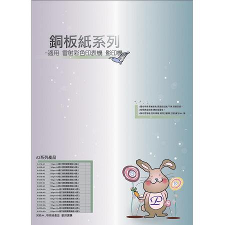 Dr.Paper 220gsm A3 進口優質亮/霧面銅板紙 50張入/包