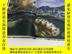 二手書博民逛書店National罕見Geographic Rarely Seen