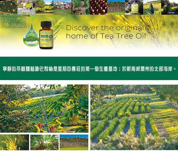星期四農莊薄荷油 Peppermint Oil(25ML)【台安藥妝】