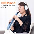 小叮噹的店 - Roland 樂蘭 Ae...