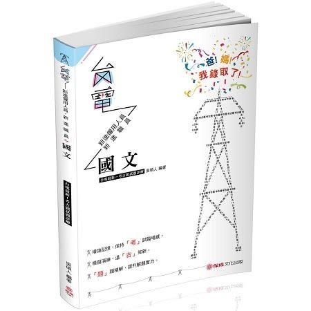 國文 台電最新 考古題試題詳解 2019台電考試(保成)