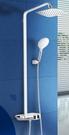 【麗室衛浴】美國 MOEN/ 70333花灑淋浴沐浴浴缸龍頭頂噴噴頭