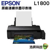 【限時促銷】EPSON L1800 A3原廠連續供墨印表機