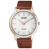 CITIZEN Eco-Drive 沉穩感時尚腕錶-AR1133-15A