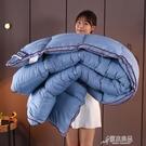 棉被 實力廠商 高端五星級酒店羽絨被95白鵝絨被芯羽絲絨秋冬棉被 YYJ【快速出貨】