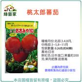 【綠藝家】大包裝G22.桃太郎蕃茄種子0.26克(約80顆)
