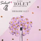 韓國 Apieu 紫羅蘭琥珀 香氛滾珠香水瓶10ml  攜帶型滾珠香水 隨身瓶  【SP嚴選家】