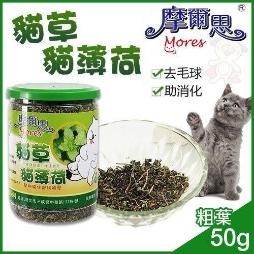 *KING WANG*摩爾思-貓草50g(粗葉) /貓薄荷/貓零食/貓玩具/貓大麻/好消化/去毛球