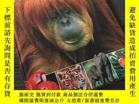 二手書博民逛書店DK兒童動物百科全書(2018年罕見修訂版) [7-10歲] [DK Animals: A Children's