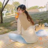 戶外可機洗野餐布加厚折疊便攜野餐墊【橘社小鎮】