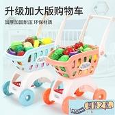 玩具車兒童購物車玩具女孩切水果男孩手小推車嬰兒過家家寶寶廚房套裝LX 【風鈴之家】