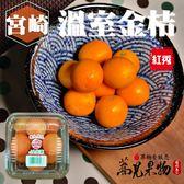 『蕎見果物』日本宮崎縣溫室金桔(PE盒)三盒一組/每小盒250公克