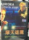 挖寶二手片-P17-103-正版DVD-電影【摩天雄鷹】-鮑西培尼 藍西海尼根(直購價)
