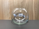 【8吋圓球 21*19cm】水晶球缸玻璃 造型 圓缸水族箱 鬥魚缸.金魚缸 魚事職人
