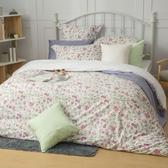 【金‧安德森】精梳棉《米亞》床包四件組 (標準雙人)