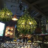 吊燈 酒吧音樂餐廳酒館咖啡廳裝飾清吧綠植 現貨快出YJT