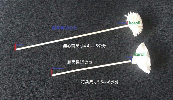 karoli卡蘿萊  擴香水竹精油專用~純手工藤棒造型花 梅花