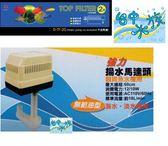 [台中水族] 雅柏UP--單層過濾槽2尺+揚水馬達20L  特價