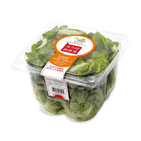 【美蔬菜盒6入】免運組