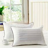 枕芯 一只一個保健枕 軟枕頭 護頸枕  sxx1128 【衣好月圓】