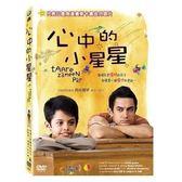 心中的小星星 DVD 免運 (購潮8)