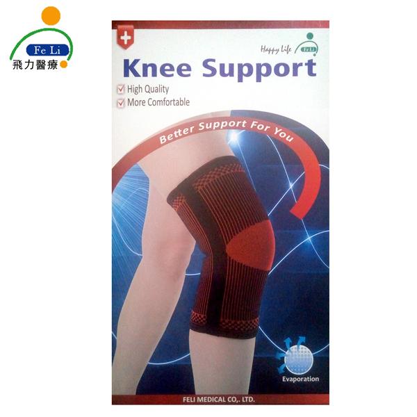 *醫材字號*【Fe Li 飛力醫療】HA系列 專業雙色軟鉄護膝(H22)