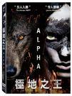 極地之王 DVD | OS小舖
