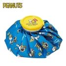 【日本正版】史努比 冰敷袋 M號 退熱袋 萬用冰袋 冰墊 冰袋 Snoopy Skater - 493348