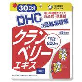 DHC蔓越莓精華(30日份)