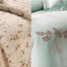 精梳棉 雙人鋪棉兩用被套6x7尺 台灣精製 ~花色同主商品