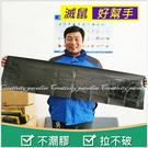 【黏鼠板】透明加厚款 120*28cm超...