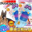 【zoo寵物商城】 美國petstages》675嗶波浣熊大尺寸狗狗玩具/個