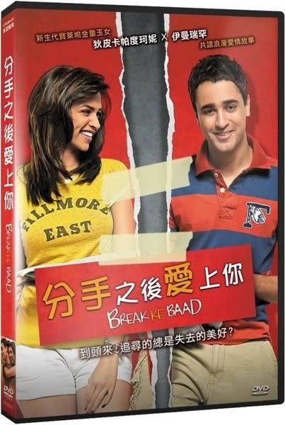 分手之後愛上你 DVD (購潮8)