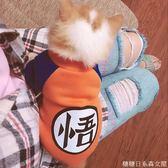 貓衣服秋冬厚款寵物貓咪衣服小貓衣服幼貓成貓藍貓加菲貓服飾秋冬