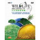 大自然的建築師DVD...
