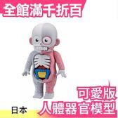 【小福部屋】日本 放課後的怪談系列 日本怪談人體器官組合模型 可愛版 刺激桌遊【新品上架】