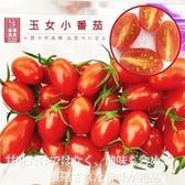 每盒74元起【果之蔬-全省免運】嚴選溫室玉女小番茄x1盒(300g±10%含盒重/盒)